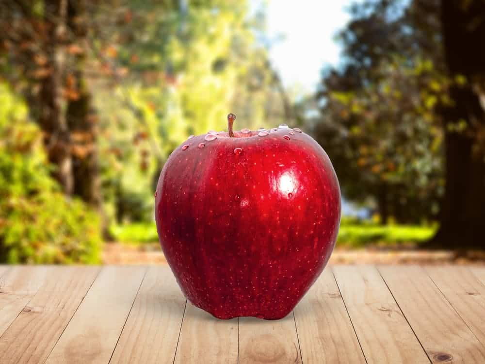 What Can We Eat Before a Yoga Class? Apples